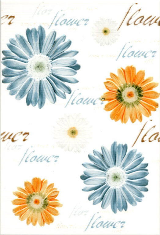 fantastic decor B15 naranja (orange) (kytky) 25/36,5 I.j. - Obklady a dlažby / Koupelny / Katalog koupelen