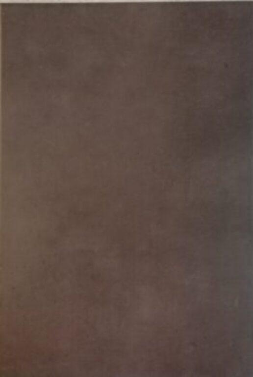 Tmavý obklad Loft chocolate 25/36,5 I.j. - Doprodej obkladů a dlažeb / Keramické obklady a dlažby