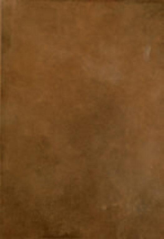 loft moka 25/36,5 I.j. - Doprodej obkladů a dlažeb / Keramické obklady a dlažby