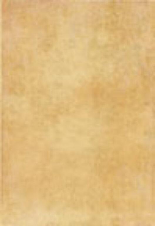 toscana beige 25/36,5 I.j. - Doprodej obkladů a dlažeb / Keramické obklady a dlažby