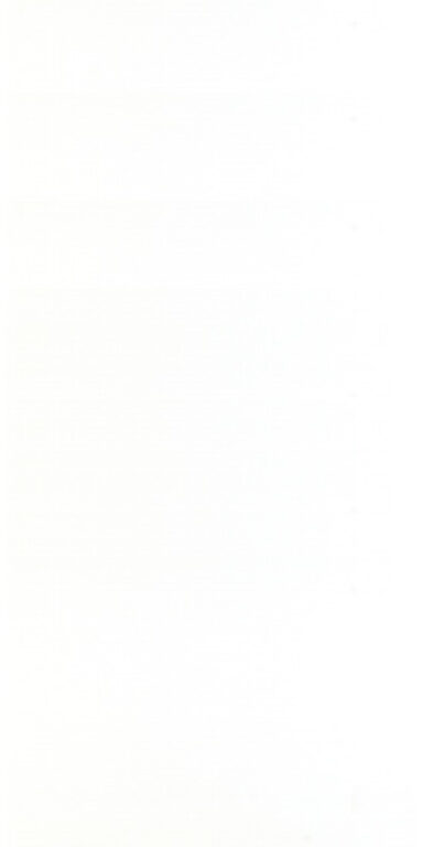 Obklad Coral 19,8/39,8 bílý WATMB030 - Doprodej obkladů a dlažeb / Obklady a dlažby RAKO v doprodeji