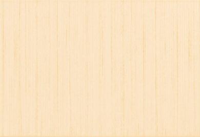 fantastic beige 25/36,5 I.j.(3200014003251)