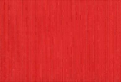fantastic rojo 25/36,5 I.j.(3200014006251)