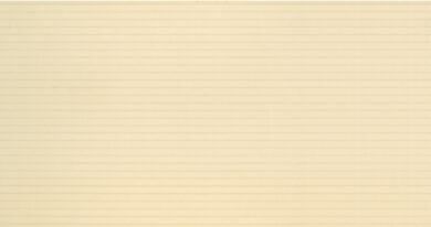 organza beige 31,6/60 I.j.(3200016005651)