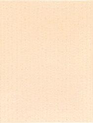 canape 25/33 I.j.oranžová WARKB011-;obklad oranžový, rozměr 25x33, balení = 1,5m2